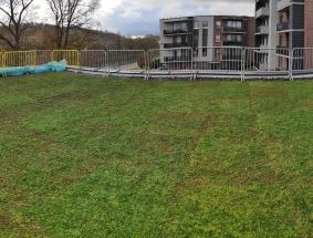 Žalių stogų apželdinimas